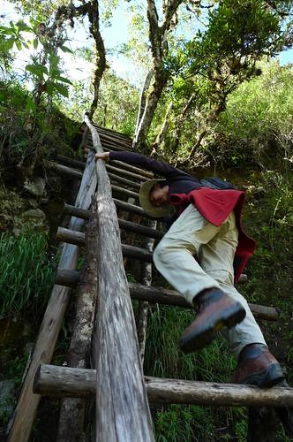 Descending Huayna Picchu- Machu Picchu, Peru