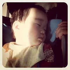 小田急線で爆睡