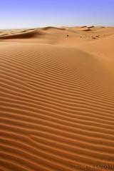 Desert Sand (TARIQ-M) Tags: shadow texture landscape sand waves desert dunes riyadh saudiarabia  canonefs1855       canon400d