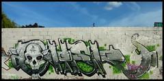 NT crew (buckshot_lefonk) Tags: streetart france wall graffiti graf murals urbanart 93 bobigny seinesaintdenis canaldelourq tncrew tn77
