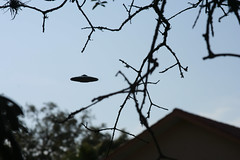 UFO ( Stranger) Tags: object space alien fake craft ufo homemade faux outer unidentified limits unidentifiedflyingobject outerlimits
