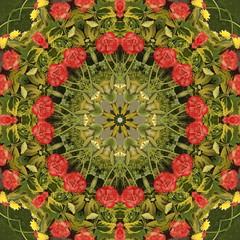 Floral Art 006 01 kaleidoscope 02a (Peter2010) Tags: flowers floral frames nottinghamshire notts floralart 2011 nottscountyshow
