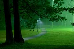 The Green Lantern l (~EvidencE~) Tags: summer kewgardens mist toronto green rain fog nikon beaches evidence