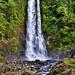 Gitgit Waterfall, Bali  (DSC_0143)