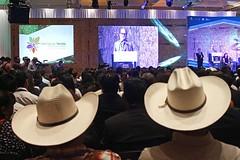 Jiutepec se convierte en la primer Ciudad Sustentable de Morelos https://t.co/oUbvy1wDbs https://t.co/l911GKzb5Q (Morelos Digital) Tags: morelos digital noticias