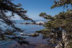 2016 09 14 CA Vacation PCH-7D2_0001 (Bob_Larson_Jr) Tags: pchpacificcoasthighwayca1coastline pch pacificcoasthighway ca 1 coastal highway outdoor beauty