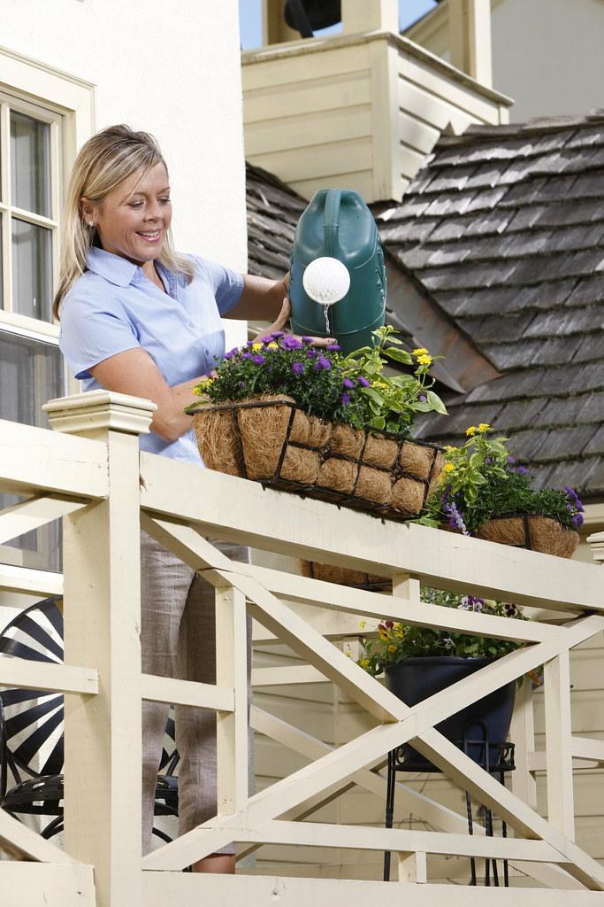 Decorating Deck   Flower Boxes (Avant Garden Decor) Tags: Flowers Plants  Outdoors Balcony