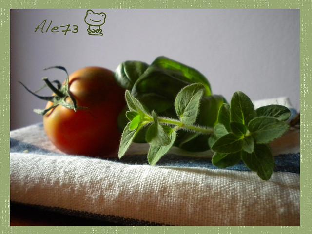 Pomodoro sardo maggiorana basilico