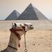 Intervención Extraterrestre n.58; EGIPTO EXTRATERRESTRE, CON SOL AHIMSA.