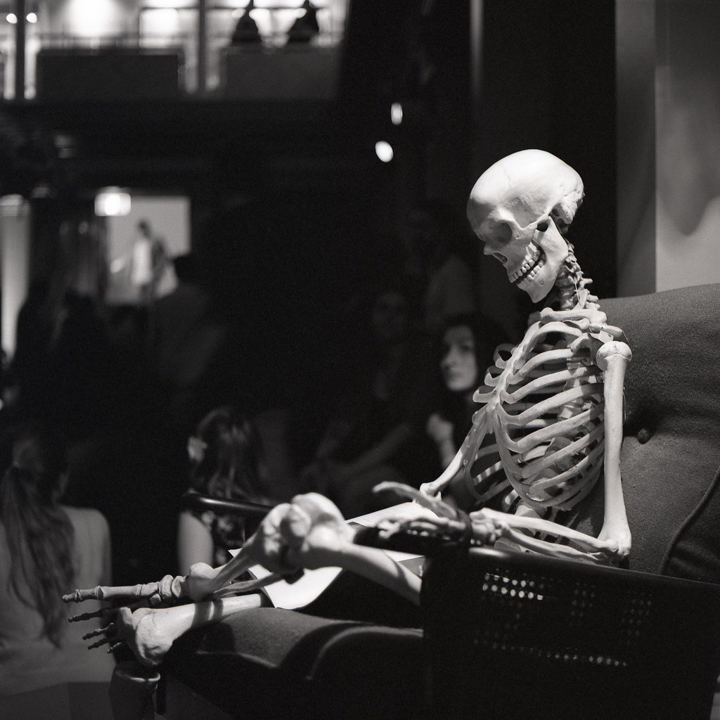 The World's most recently posted photos of skeleton and