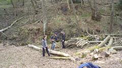 Blacka Moor conservation work