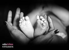 Ensaio Alice_aIMG_1257 bw (Edu Rickes) Tags: children beb guria criana menina estdio brazilianphotographers fotgrafosgachos pelotasfotoclube sinosfotoclube fotgrafosdepelotas edurickesfotografia fotgrafosportoalegre ensaiofotogrficobeb