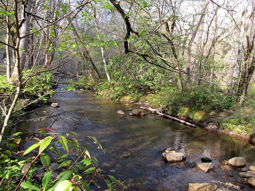 Deep Creek Hiking-1