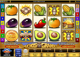 Muchos Grande slot game online review