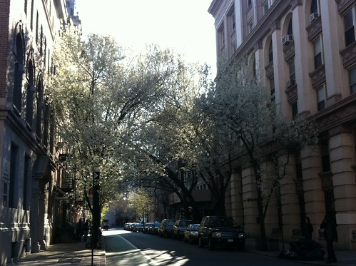 April in New York