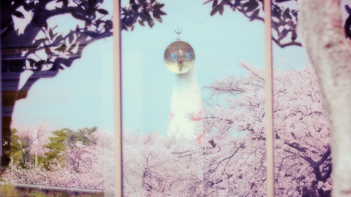 13254 - Sakura2011 #8