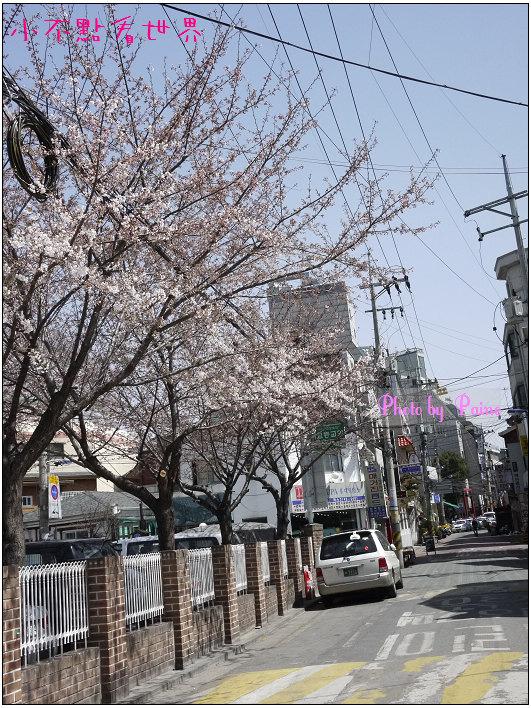 合井皇甫的店(弘大) (6).jpg