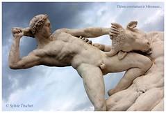 Thse combattant le Minotaure 2 (SISSI 2014) Tags: sculpture paris animal statue sylvie nu jardin ciel tuileries homme sissi 2011 minotaure thse