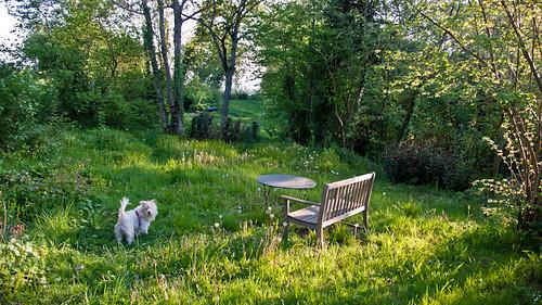 Garden in France