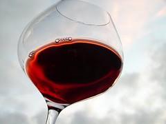 Estos son los 7 Pinot Noir que perfilan un estilo en la Argentina