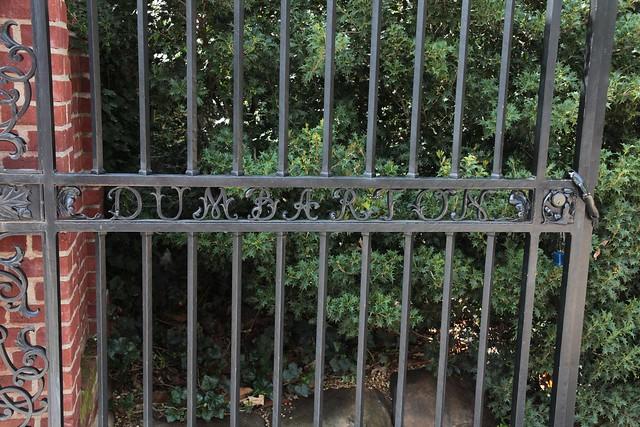 Scenes - Dumbarton Oaks