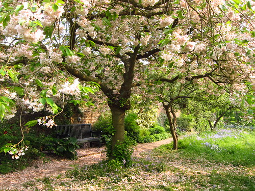 The Orchard Garden at Fenton House