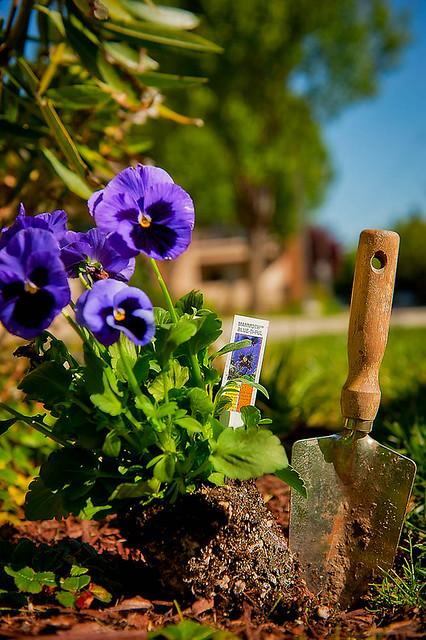 04.21.11 Gardening-9-Edit.jpg