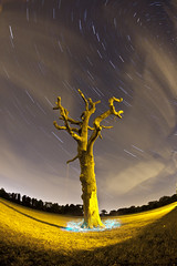 El Wire Tutorial ([Nocturne]) Tags: longexposure sky lightpainting tree abandoned night clouds dead lights star nocturne starry startrails elwire noctography wwwnoctographycouk