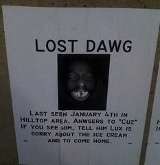 lost dawg (sanitaryum) Tags: hilarious funny lol humor rofl cleanhumor