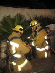 Five Pets Saved by LAFD in Hollywood Hills Blaze. © Photo by Scott LaRue. Click to view more...