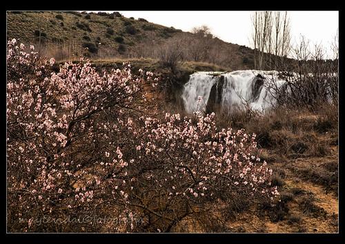 Primavera temprana en el Hundimiento