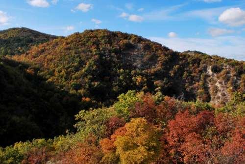 I colori dell'autunno sul Monte Mauro, foto di Massimiliano Costa