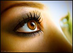 Joanna's Eyes (kefski) Tags: brown eye closeup lashes