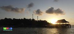 Sunrise over Ubin Jetty (wildsingapore) Tags: pulau ubin shore singapore marine coastal intertidal seashore marinelife nature wildlife underwater wildsingapore landscape