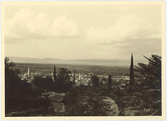 081 (University Library of Kyiv-Mohyla Academy) Tags: archives orientalismus nature