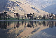 Reflections in Buttermere (Lune Rambler) Tags: trees beauty reflections peace lakedistrict calm thelakes buttermere lakedistrictnationalpark northernlakes platinumheartaward oltusfotos doublyniceshot lunerambler tripleniceshot mygearandme mygearandmepremium fuji3rdmarch flickrstruereflection1 flickrstruereflection2 flickrstruereflection3 flickrstruereflection4 flickrstruereflection5 flickrstruereflection6 flickrstruereflection7 flickrstruereflectionexcellence 4timesasnice 6timesasnice 5timesasnice 7timesasnice artistoftheyearlevel7 artistoftheyearlevel6