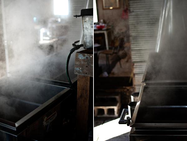cabane à sucre | sugar shack
