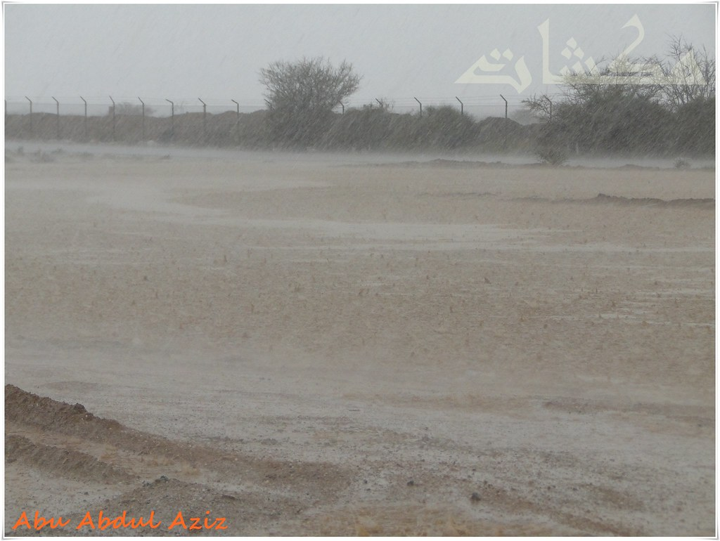 خذلك تـصبيرة من سنكرس واستمتع بأمطار وبردية العرفاء ...