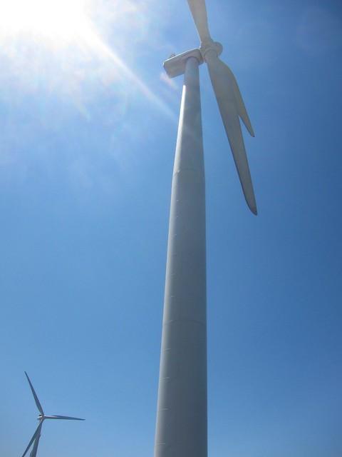 Bangui Windmills (4)