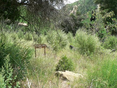 Walk-in Camps Trail