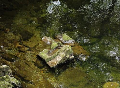River Shimna Rock