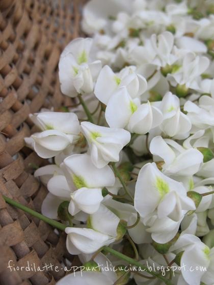 Fiori di acacia (robinia)