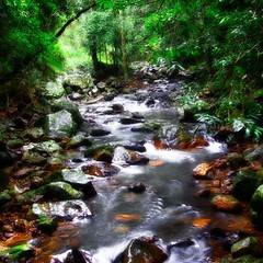 Upstream - Natural Bridge Springbrook National Park (Vanessa Mylett) Tags: park green wet water forest photography waterfall bush rainforest rocks exposure australia naturalbridge queensland cave colourful hdr basalt geological goldcoasthinterland gondwana naturalarch springbrooknationalpark numinbahvalley 10x22mm canon7d