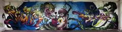 Flower Power CFS @ W4G (Fat Heat .hu) Tags: art graffiti budapest spraycan cfs molotow writeforgold w4g coloredeffects write4goldprebattle