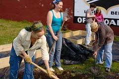 Day 193: Community Gardeners by allankcrain
