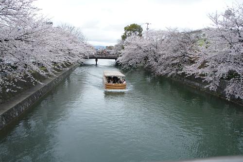 9th April, Kyoto