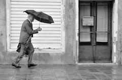 1. Street in Venice #1 (dClaudio [homofugit]) Tags: street old venice man face umbrella nikon funny running aged grampa raining d90 ringexcellence