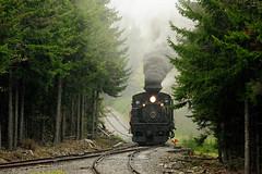 The Wye (MSummersPhotography) Tags: railroad rain train engine steam wv westvirginia locomotive cass wye baldknob cassscenicrailroad railfanweekend photocharter shay11 msrlha carlfranz