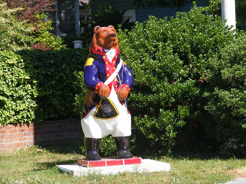 Confederate soldier bear