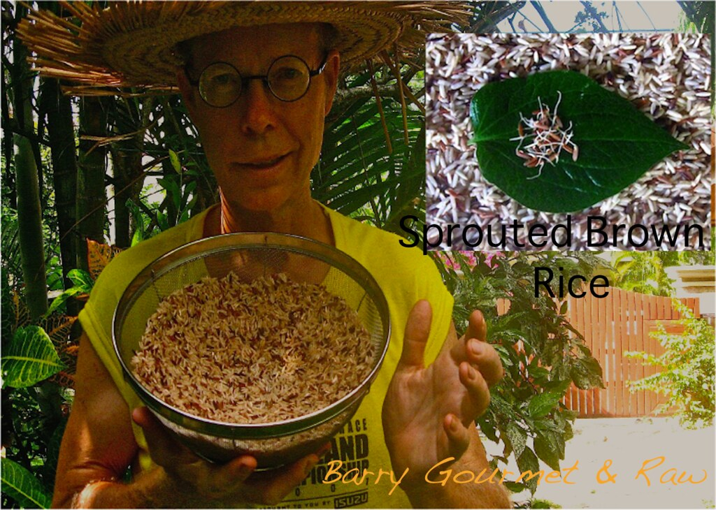 Barry-Gourmet-with-Sprouted Brown Rice